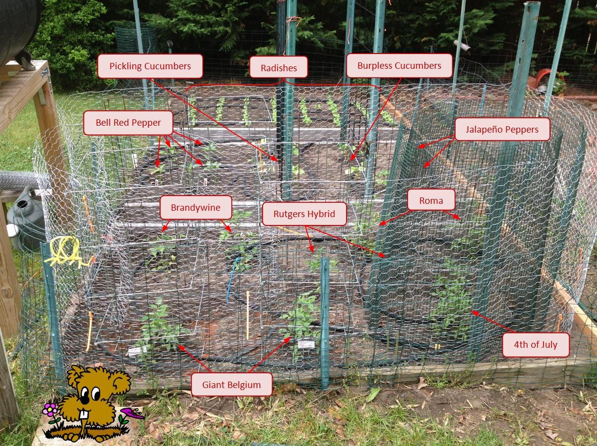 2013-garden-labeled